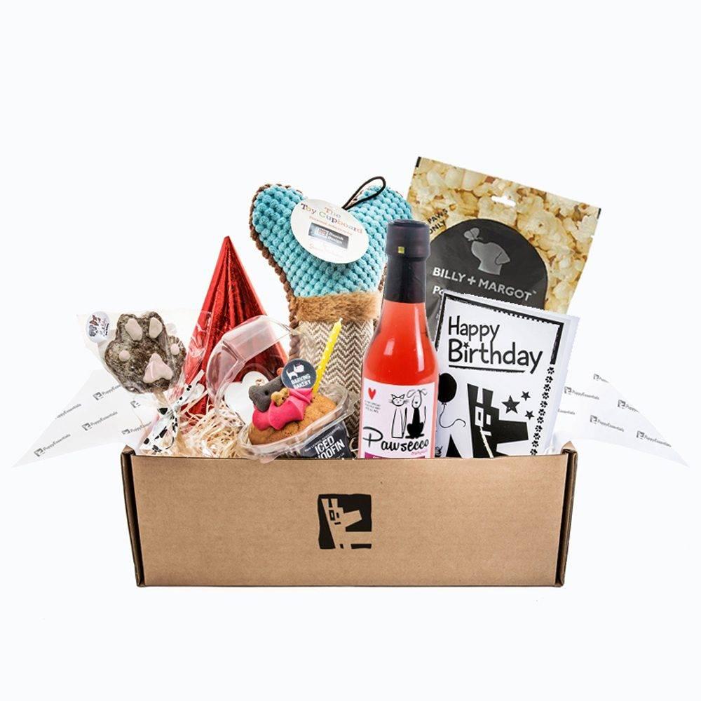 Dog Birthday Box Girls