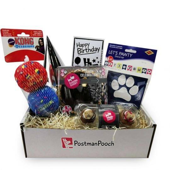 Dog Party Birthday Box