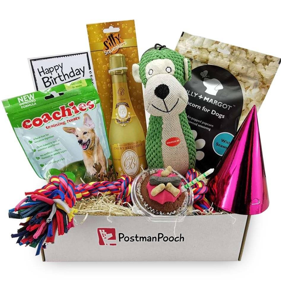 Luxury dog birthday box