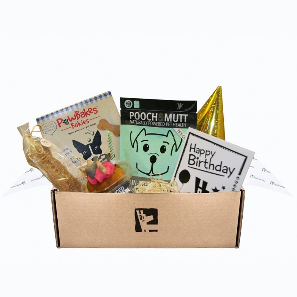 Dog Birthday Treat Box