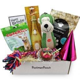 Dog Birthday Gift