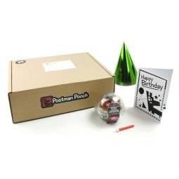 Build a dog birthday box