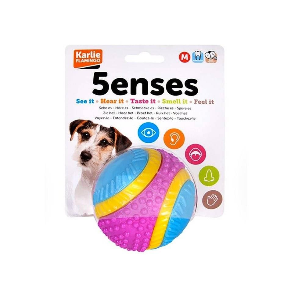 5 Senses Dog Ball - Large