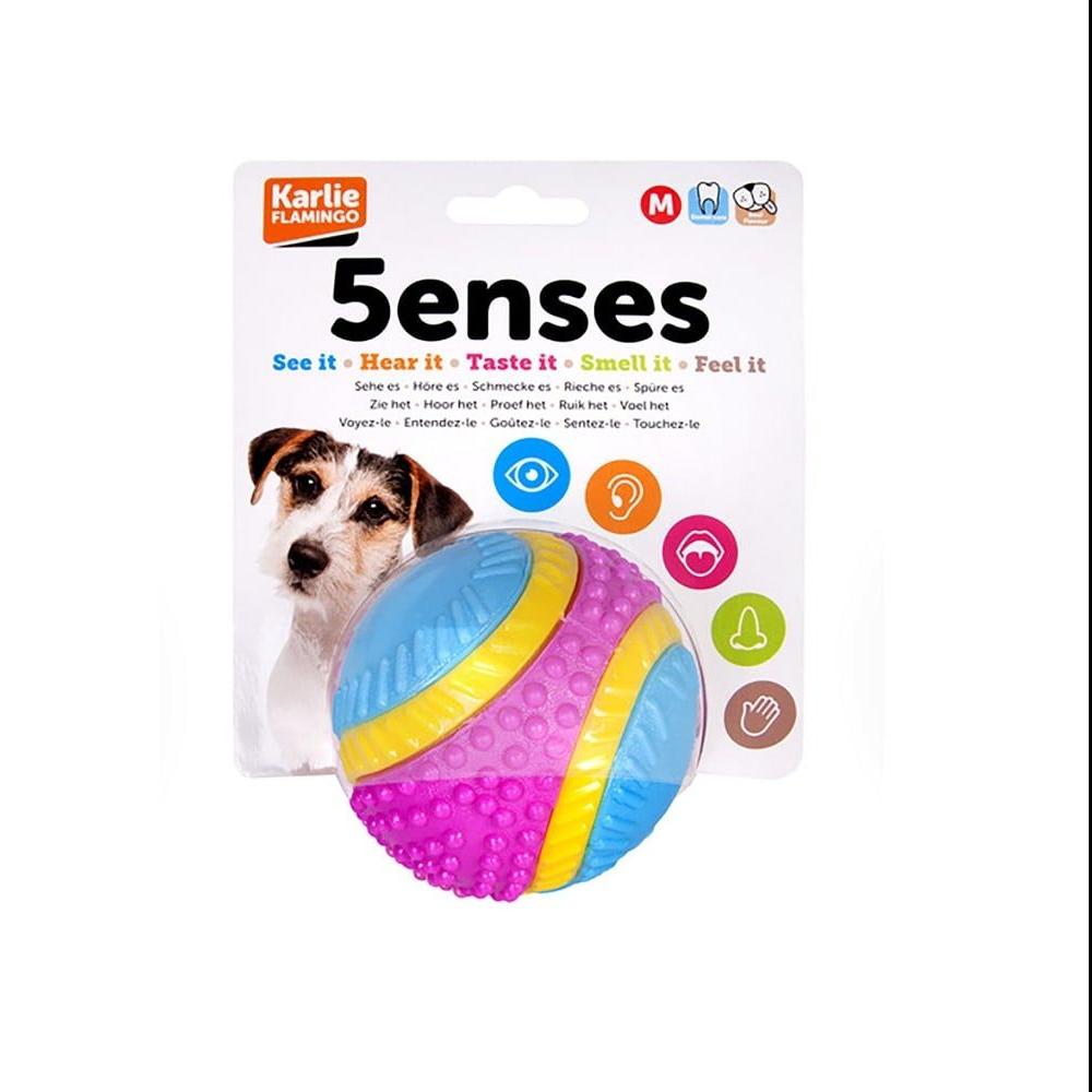 Five senses ball