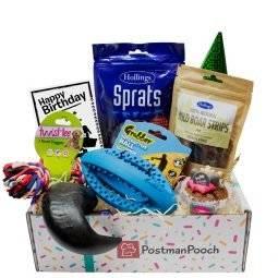 Dog Birthday Box Tough