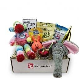 Dog Toy Birthdays Box