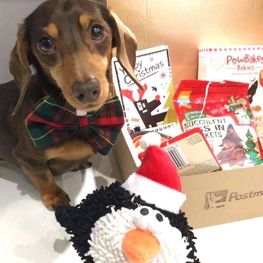 The Luxury Christmas Box