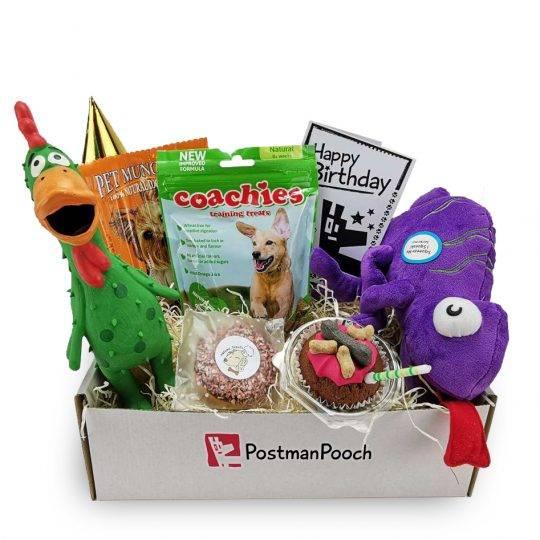 New dog toy birthday box